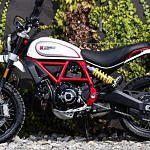 Ducati Scrambler 800 Café Racer (2019)