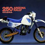 Gilera RX 250 Arizona Rally (1985)