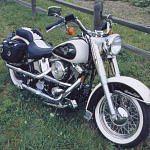 Harley Davidson FLSTN Nostalgia Cow Glide Limited Editon (1993)