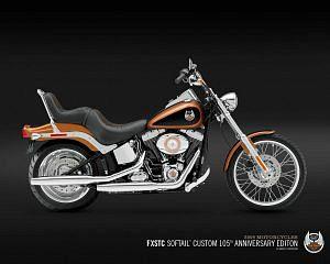 Harley Davidson FXSTC Softail Custom (2008)