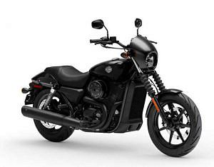 Harley Davidson XG 500 Street (2018-19)