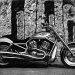 Harley Davidson VRSCA V-Rod 100th Anniversary Edition (2003)
