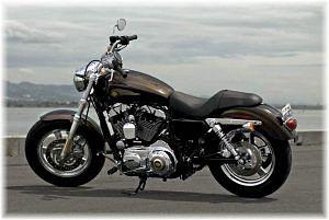 Harley Davidson XL1200C Sportster Custom 110th Anniversary (2013)