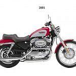 Harley Davidson XL 1200C Sportster Custom (2000-01)