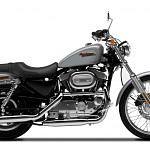 Harley Davidson XL 883C Sportster Custom (2000-01)