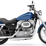 Harley Davidson XL 883C Sportster Custom (2004-05)