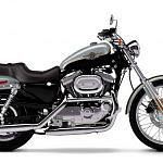 Harley Davidson XL 1200C Sportster Custom (2002-03)