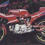 Harris Rayner Ducati (1996)