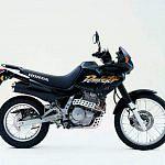 Honda NX 650 Dominator (2002)