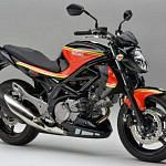 Suzuki SFV 650 Gladius Barry Sheene (2012)