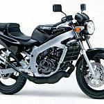 Suzuki RG/TV200 Wolf (1992)