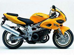Suzuki TL 1000S (2001-02)