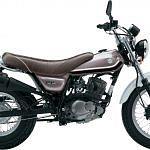 Suzuki RV 125 VanVan (2011-13)