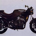 Triumph Speed Triple 750 (1994-96)