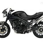 Triumph Speed Triple Carbon LE (2009)