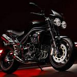 Triumph Speed Triple 15th Anniversary (2009)