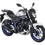 Yamaha MT 25 (2015-16)