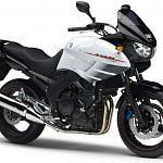 Yamaha TDM 900 abs (2008-09)