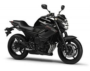 Yamaha XJ6 Diversion (2013-14)