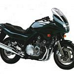 Yamaha XJ900S Diversion (2001-03)