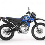 Yamaha XT125R (2009-12)