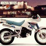 Honda NX250 Dominator (1988-90)