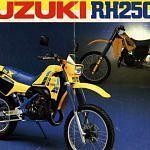 Suzuki RH 250X (1986)
