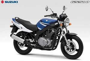 Suzuki GS500E (2002-03)